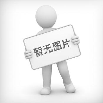 电接点双金属优德88中文网站 双金属优德88中文网站 电接点优德88中文网站