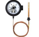 全不锈钢电接点压力式优德88中文网站WTZ-288