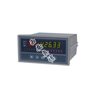 温度巡检仪XSLE/A08S0P0V0
