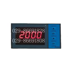 大延牌温度显示仪表DY2000